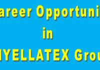 Career Opportunity in VIYELLATEX Group